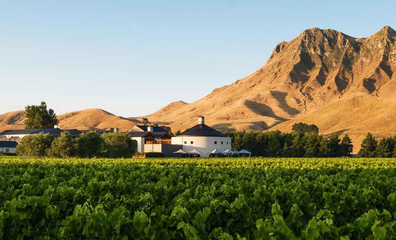 Craggy Range Vineyards est l'un des plus beaux vignobles de Nouvelle-Zélande.