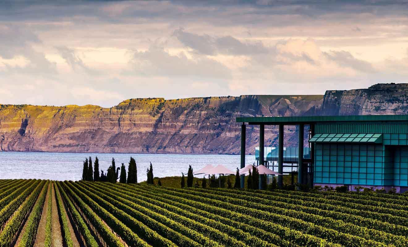 Avec une première vendange en 2003, Elephant Hill a su s'imposer rapidement comme l'un des tout premiers vignobles de la baie de Hawkes.