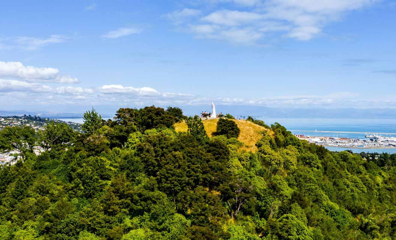 Botanical Hill est une colline recouverte de forêt en marge du centre-ville de Nelson.