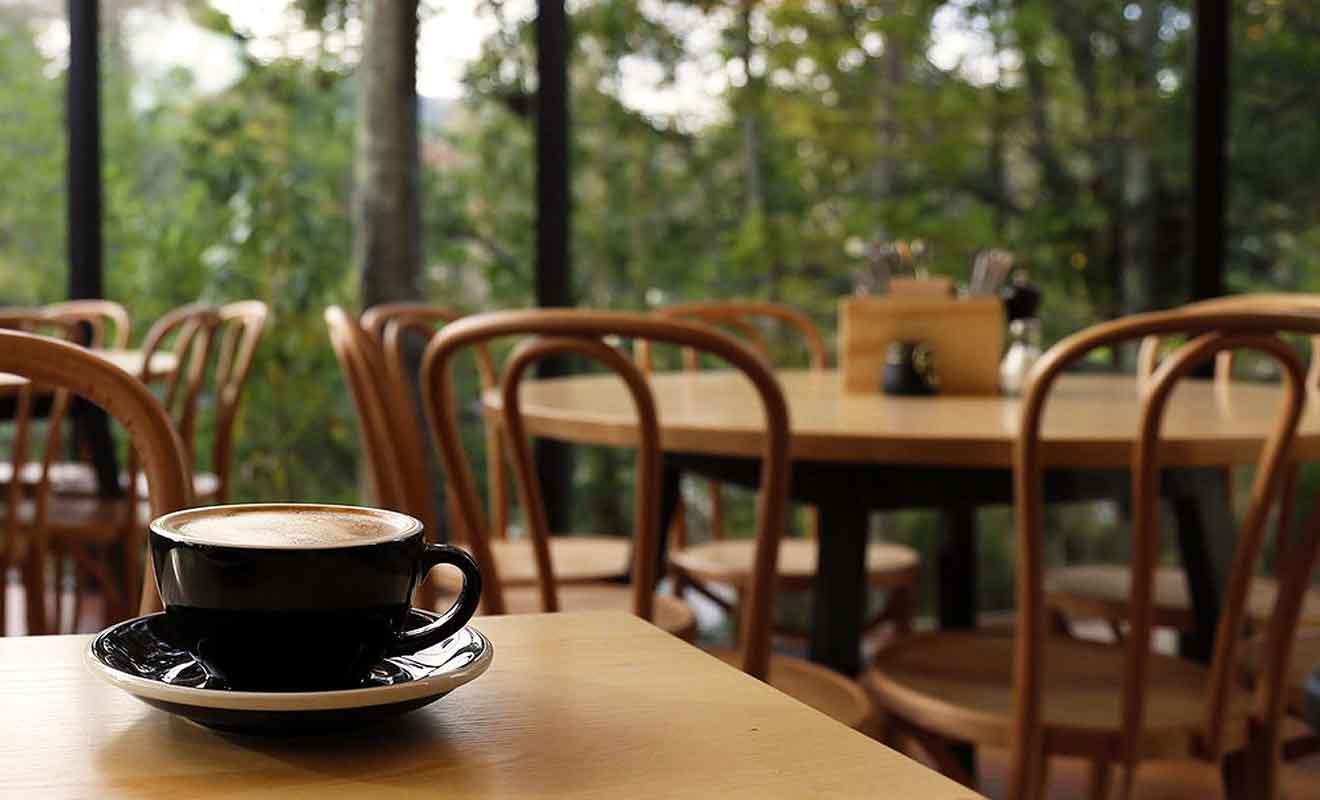 Prenez votre petit-déjeuner en écoutant le chant des oiseaux dans le parc de Queens Garden.