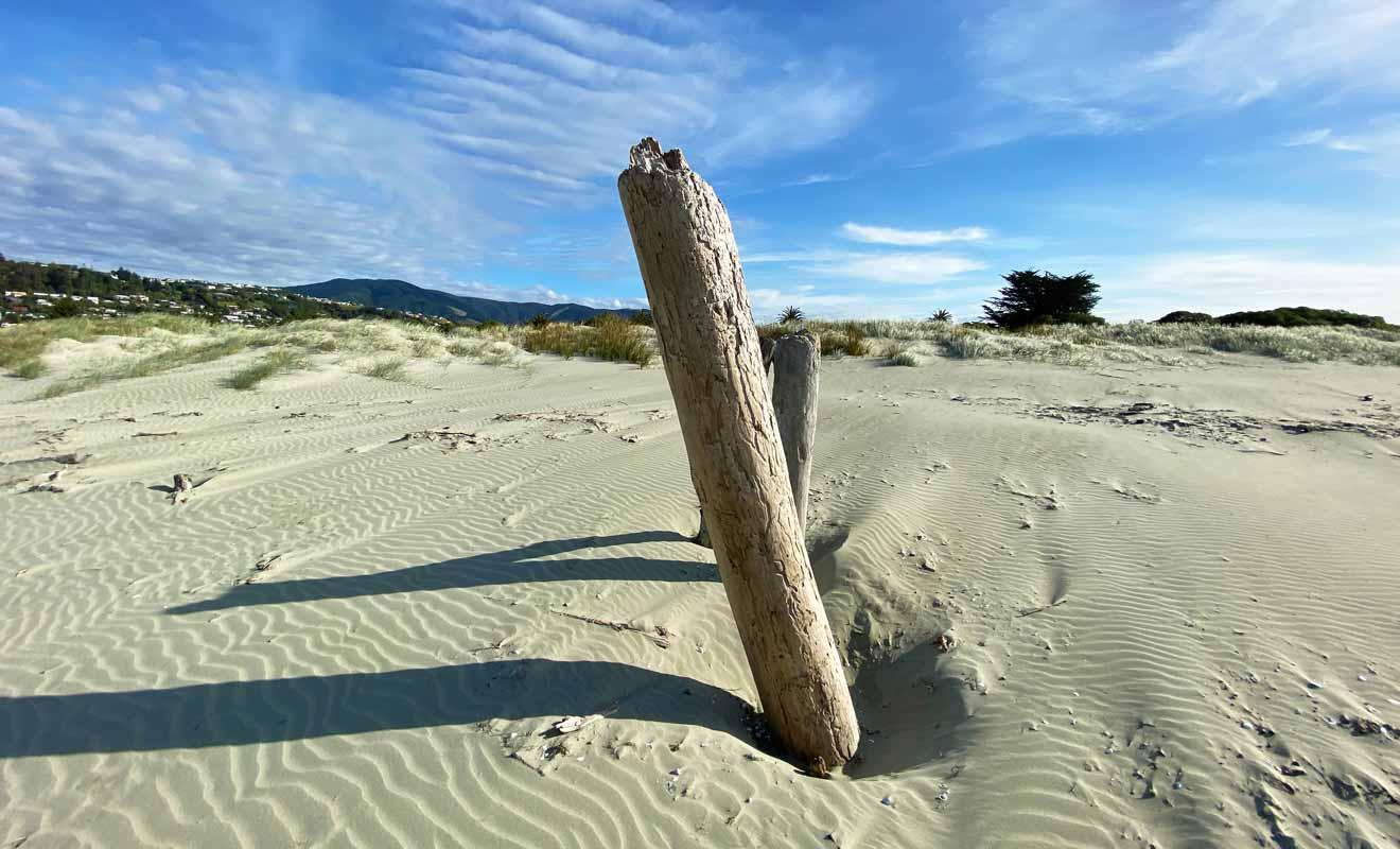 La plage de Tahunanui Beach n'existait pas il y a un siècle et elle s'est formée naturellement.