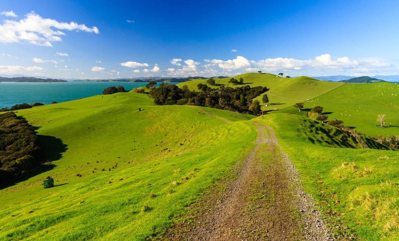 Toutes nos consignes pour la conduite à gauche finiraient presque par nous faire oublier à quel pont la route en Nouvelle-Zélande est un paradis.