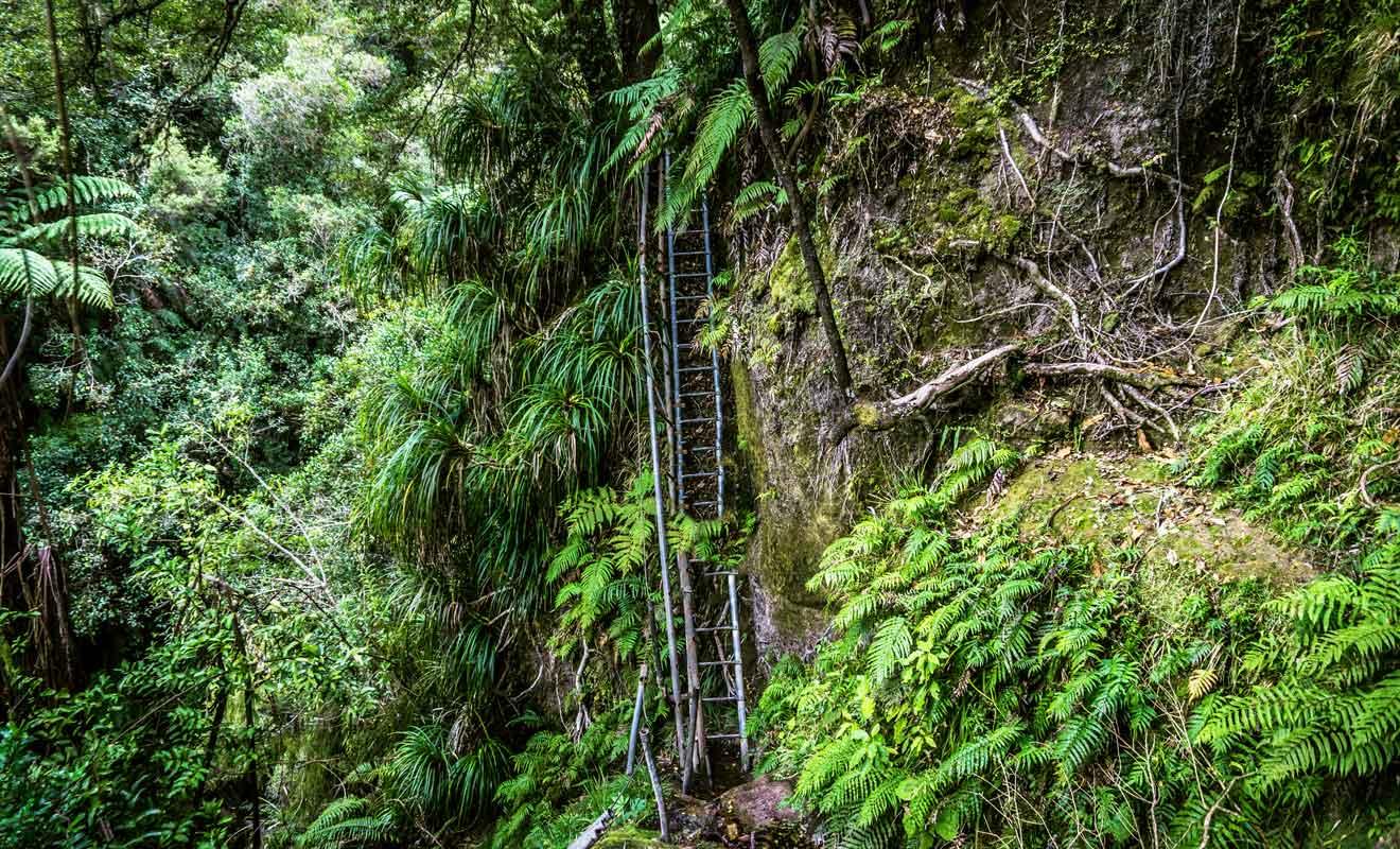 Il faudra descendre des échelles de bois et prendre garde à ne pas finir au fond d'un ravin !