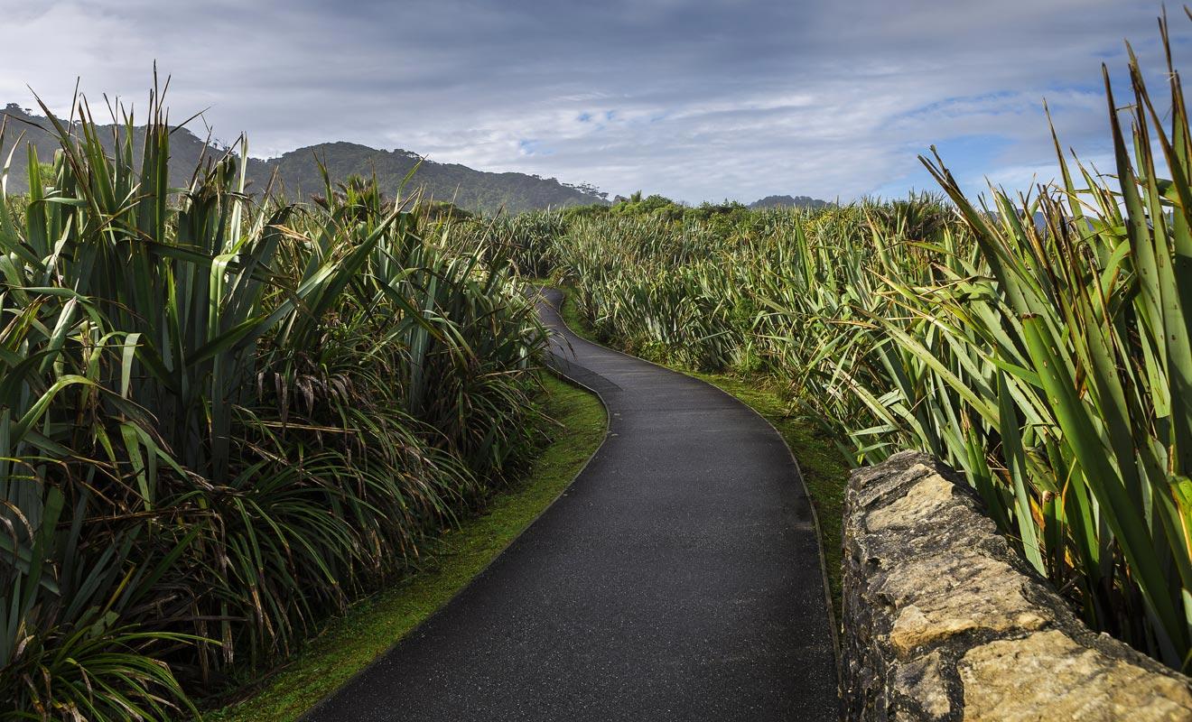 Le flax permettait aux Maoris de fabriquer des paniers. Aujourd'hui il est toujours employé par les artisans.