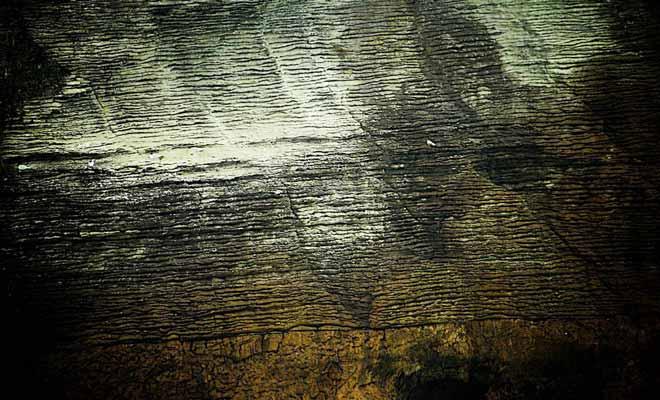 La couche la plus ancienne remonte à 33 millions d'années. À cette époque a eu lieu la deuxième grande extinction de masse depuis la fin des dinosaures.