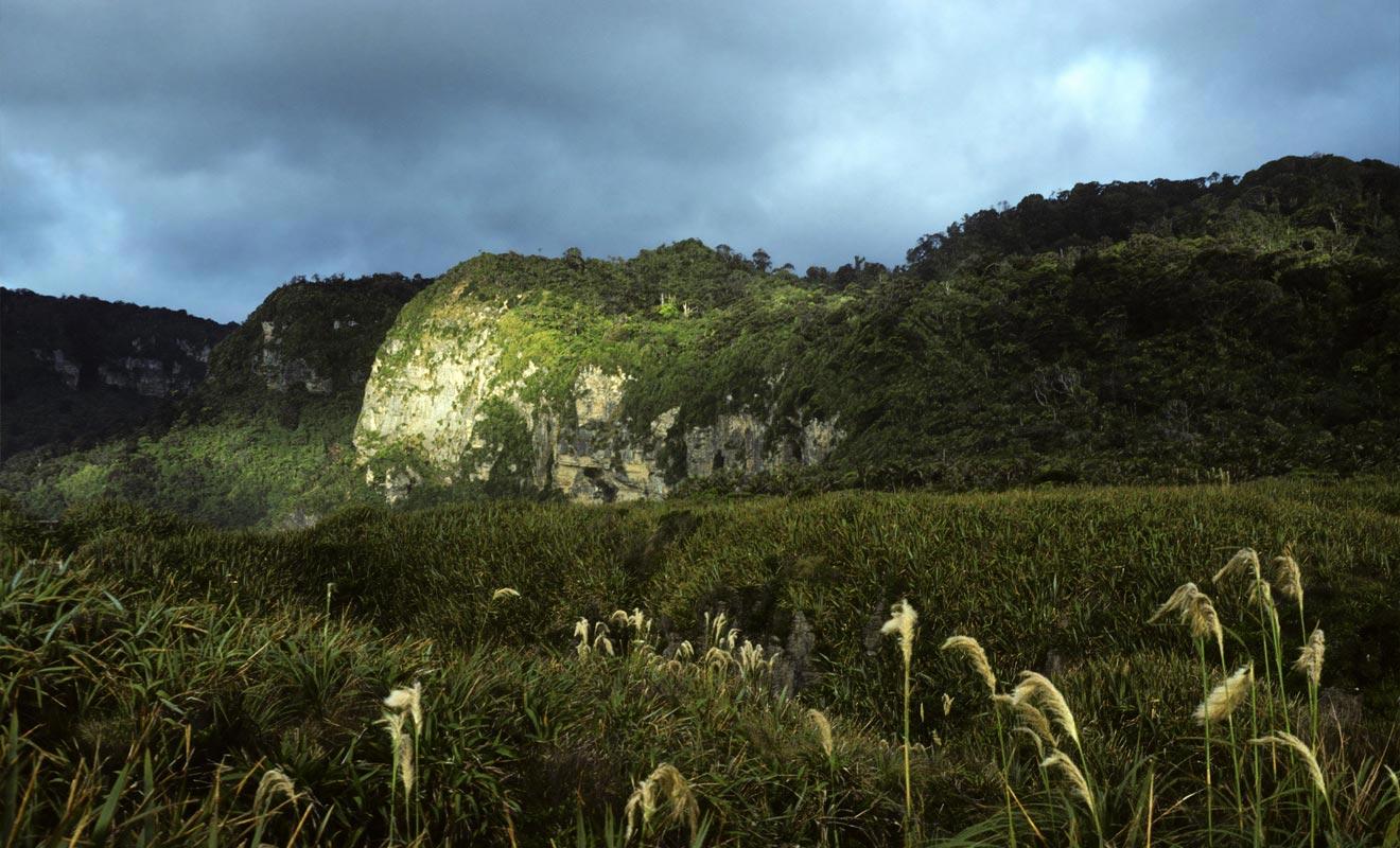 En complément de la visite aux Pancake Rocks, vous pouvez réserver des activités dans le parc de Paparoa.