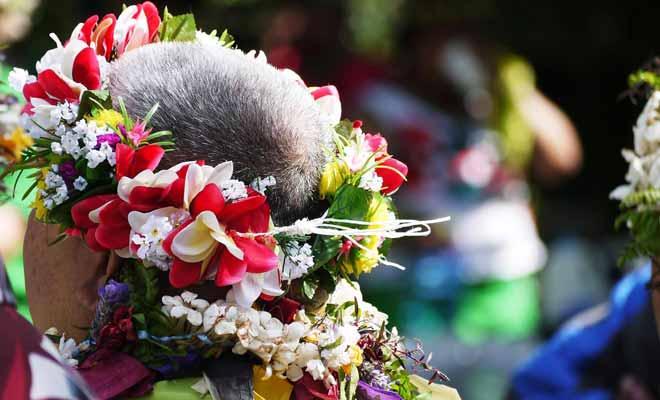 Le festival Pasifika n'est pas le seul festival qui se tienne chaque année en Nouvelle-Zélande. Chaque région fête ses origines et les foires au vin attirent de plus en plus de visiteurs.