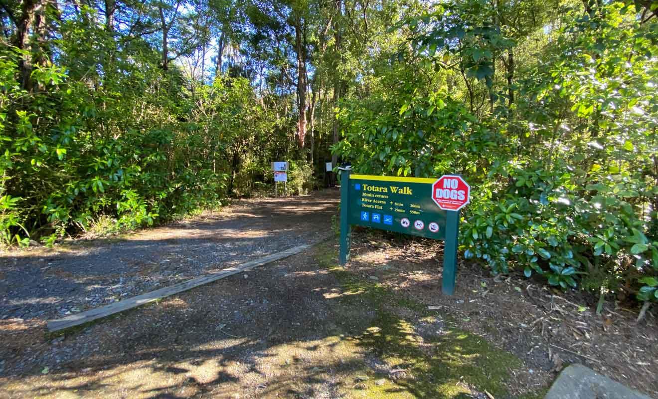 Le sentier en forêt longe la rivière pour rejoindre un second camping.