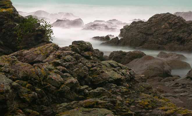 La brume matinale ajoute une note fantastique à la côte déchiquetée de Kaikoura.