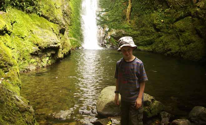 Pour vous rendre à la nurserie des otaries, cherchez la rivière « Ohau Stream » sur la carte. Le sentier qui suit une voie de chemin de fer mène en forêt avant de rejoindre la cascade. Les otaries sont présentes presque toute l'année.