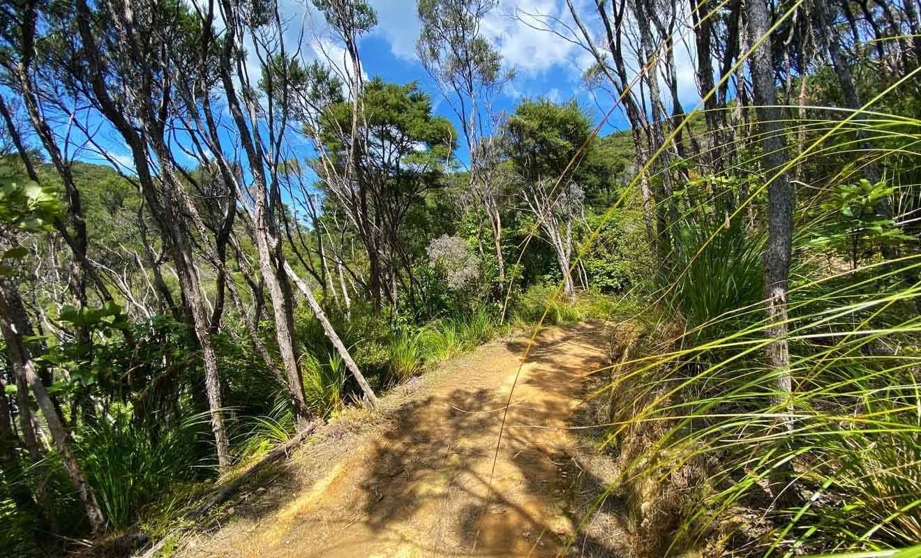 Les Maoris préféraient porter leurs pirogues à travers les collines plutôt que d'affronter la navigation dans la région.