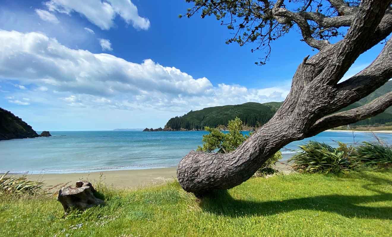 Le vent ne souffle pas en continu et la plage est propice au pique-nique.