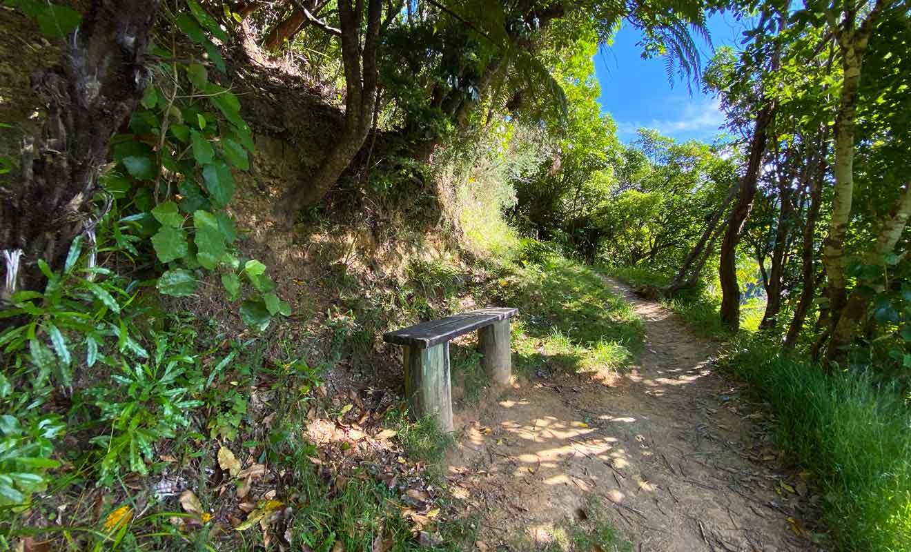 La végétation a poussée en face des bancs qui permettaient de s'asseoir devant le paysage, et il faudra grimper au sommet pour profiter d'un vrai point de vue.