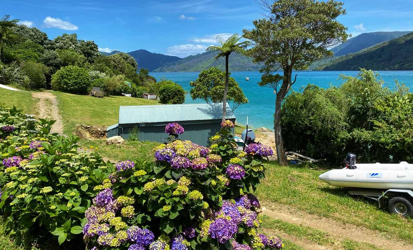 Les Marlborough Sounds jouissent d'un ensoleillement parfait durant les mois d'été.