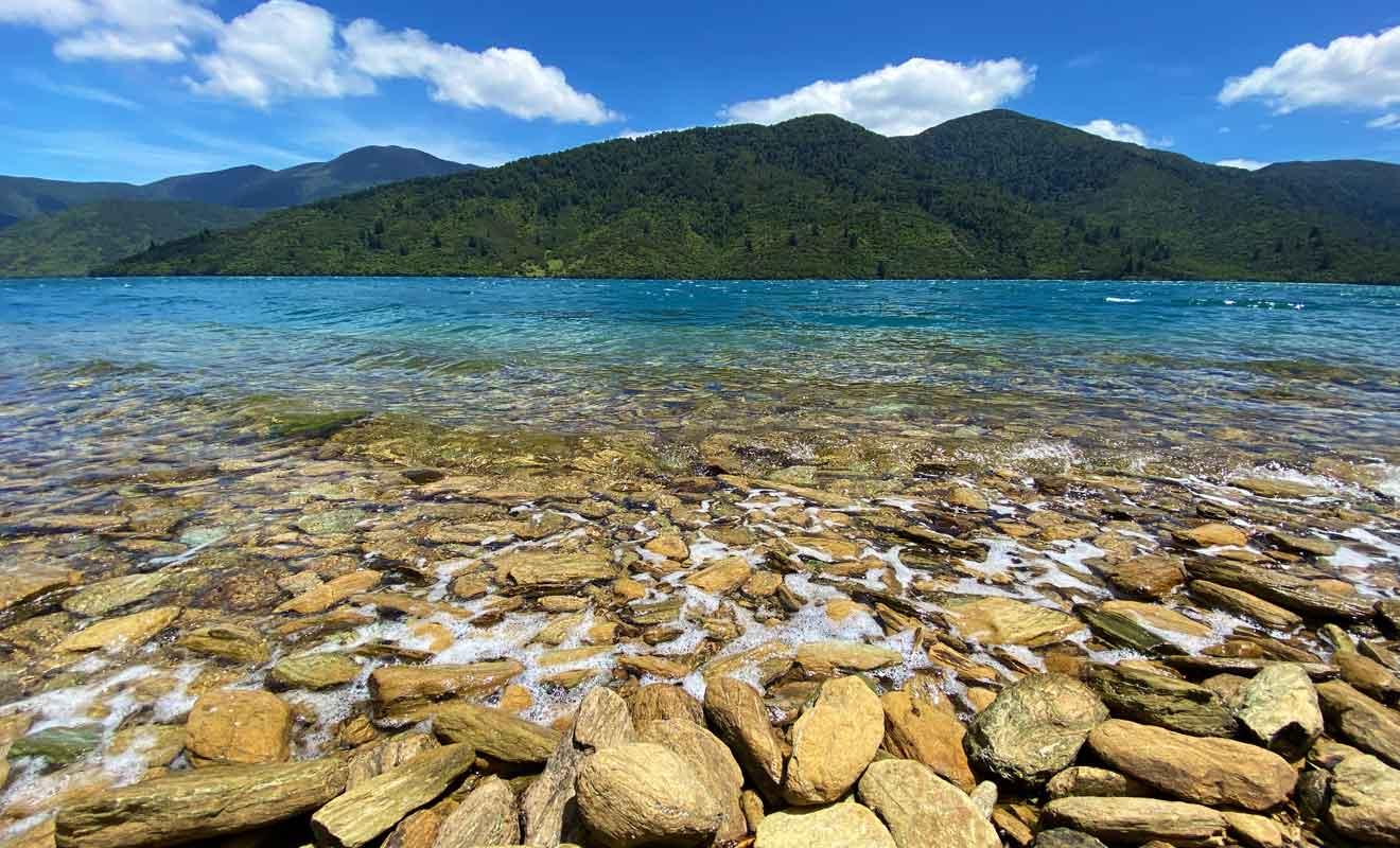 Les plages du Queen Charlotte Track figurent parmi les plus belles de Nouvelle-Zélande.