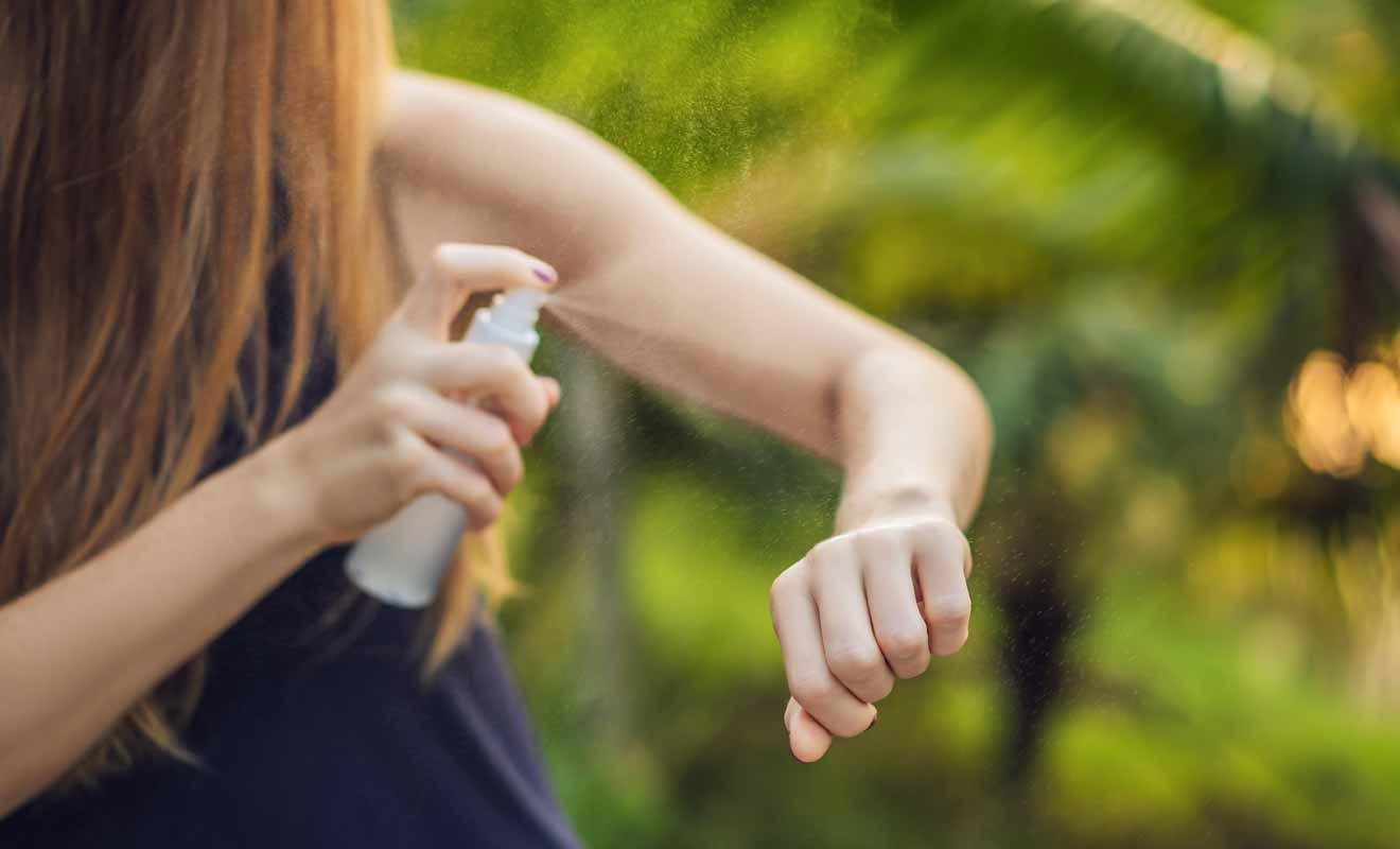 Les sandflies ne sont pas toujours présentes sur le sentier de randonnée, mais en la matière il vaut mieux prévenir que guérir.