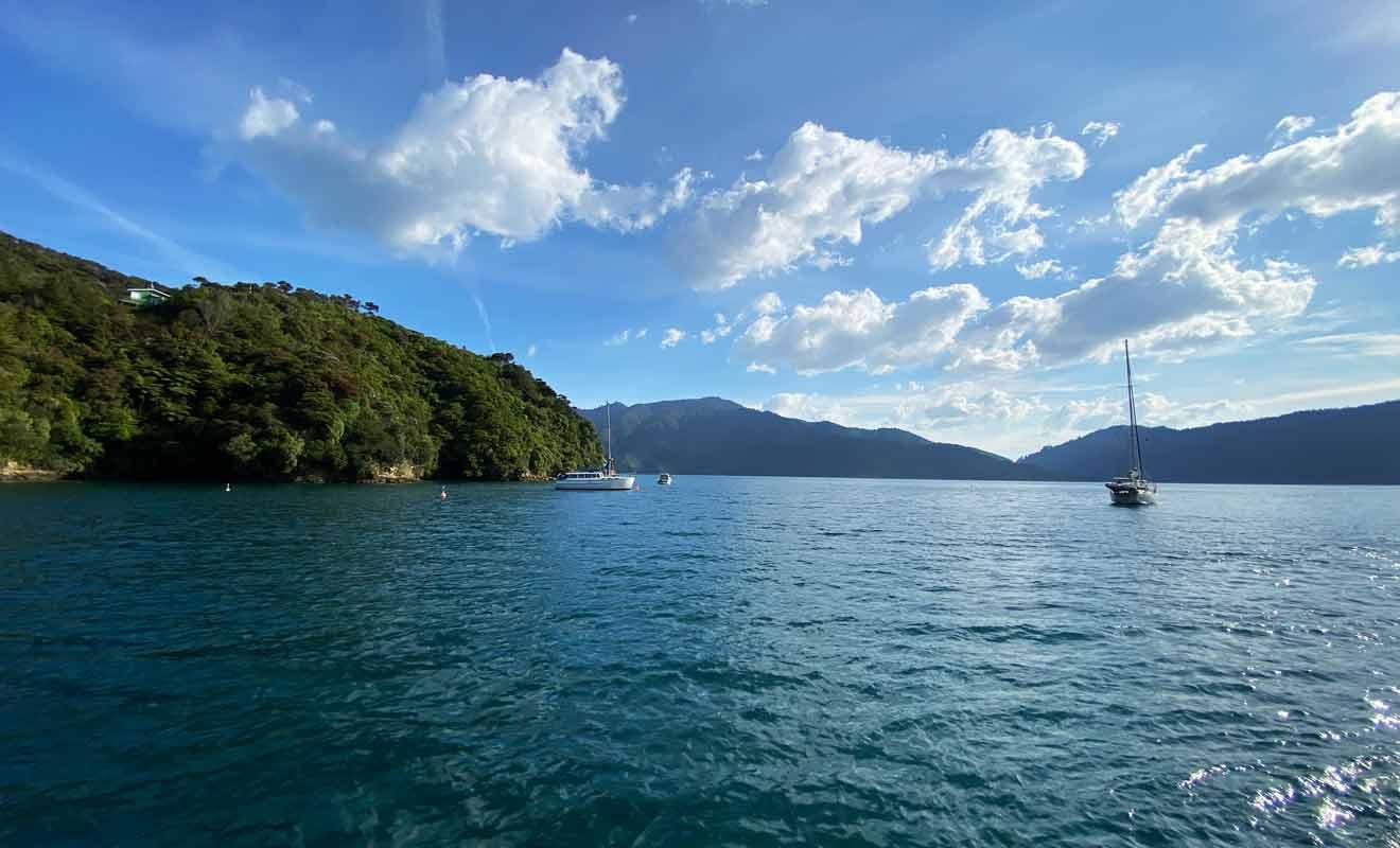 Le trajet entre Picton et Ship Cove n'est pas vraiment une croisière, mais vous pouvez tout de même profiter du paysage.