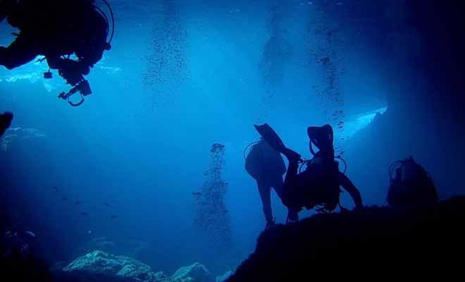 La plongée sous-marine n'est pas dangereuse, car vous serez parfaitement encadré par une équipe de professionnels qui totalisent des centaines de sorties.