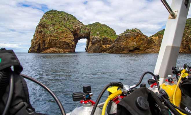 Si vous êtes dans la région de Whangarei, pourquoi ne pas en profiter pour faire un baptême de plongée sous-marine. La petite ville de Tutukaka et les Poor Knight Islands ne sont qu'à 28 km (une demi-heure de route).