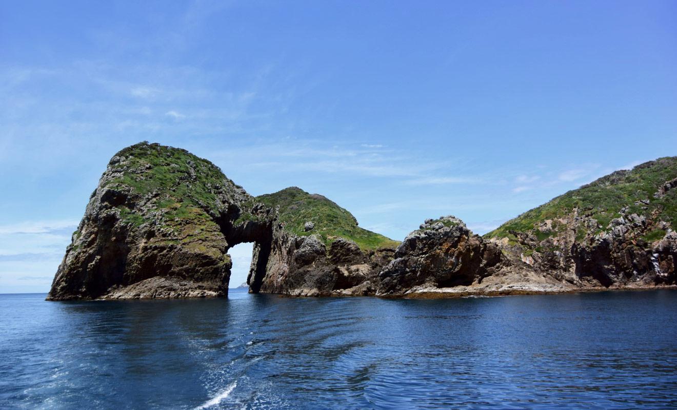 Les Poor Knight Islands offrent les meilleurs emplacements de plongée de Nouvelle-Zélande, avec de nombreuses grottes marines à explorer.