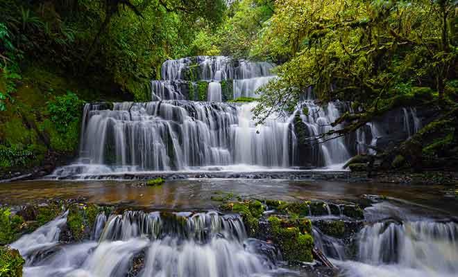 In regions where more than seven meters of rain fall each year, rivers produce spectacular waterfalls such as the Purakaunui falls.
