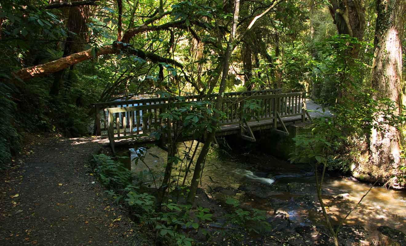Un pont permet de franchir une rivière avant de rejoindre la cascade.