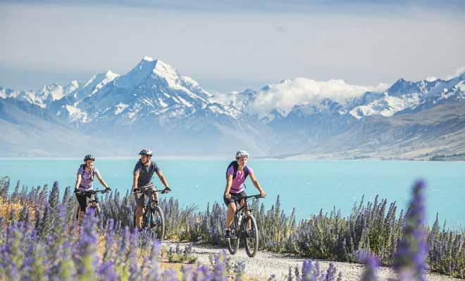 Le vélo se pratique quelle que soit la saison en Nouvelle-Zélande, mais les plus belles balades sont à réaliser au printemps quand les vallées se couvrent de fleurs, ou en été quand les températures sont plus agréables.