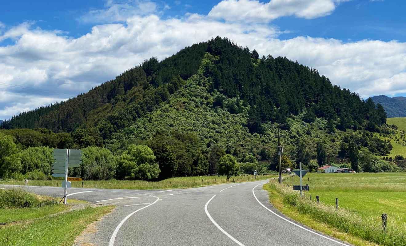 Toute cette région n'a pas été déboisée et sa végétation est plus importante qu'ailleurs dans le Marlborough.