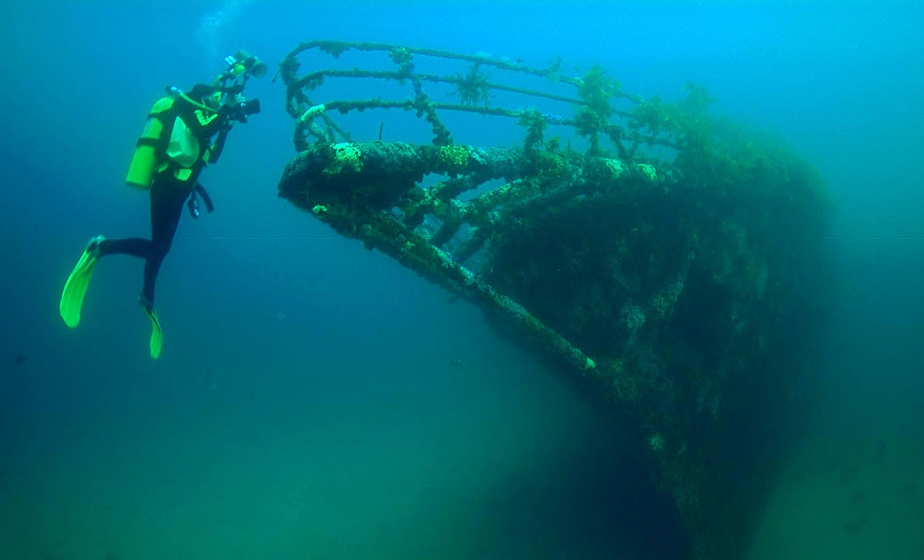L'épave du Rainbow Warrior est devenue un récif pour les poissons. Des compagnies de plongée sous-marine organisent des sorties pour observer ce qui reste du navire de Green Peace.
