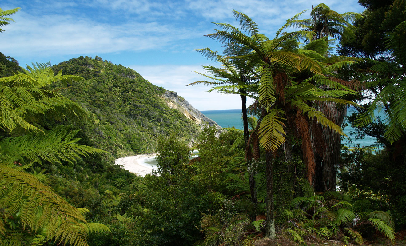 Le parc national de Kahurangi est le deuxième de Nouvelle-Zélande par sa superficie et l'un des plus varié avec une succession de montagne, forêts et plages à franchir.