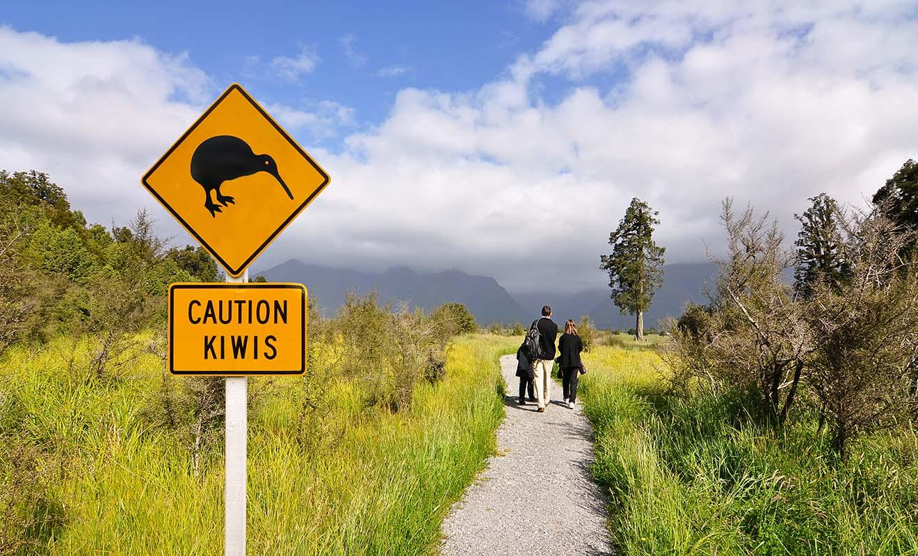 La signalétique routière utilisée en Nouvelle-Zélande respecte les standards internationaux.