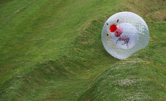 The Zorb is a large sphere of plastic that allows you to descend a hill. In summer, you can even ask for water to be added inside the Zorb to feel like in a washing machine!