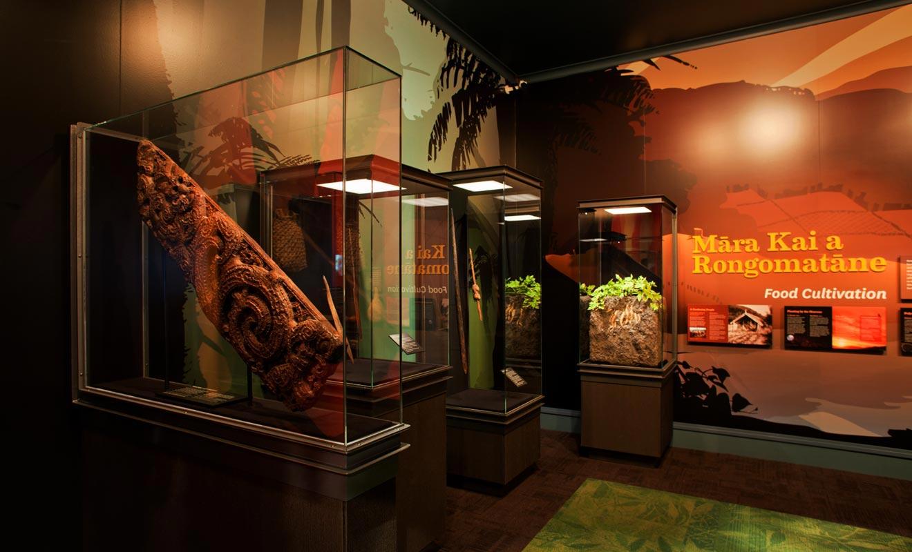 Le musée de Rotorua possède une collection permanente d'oeuvres d'art maories. Des expositions temporaires sont également proposées.