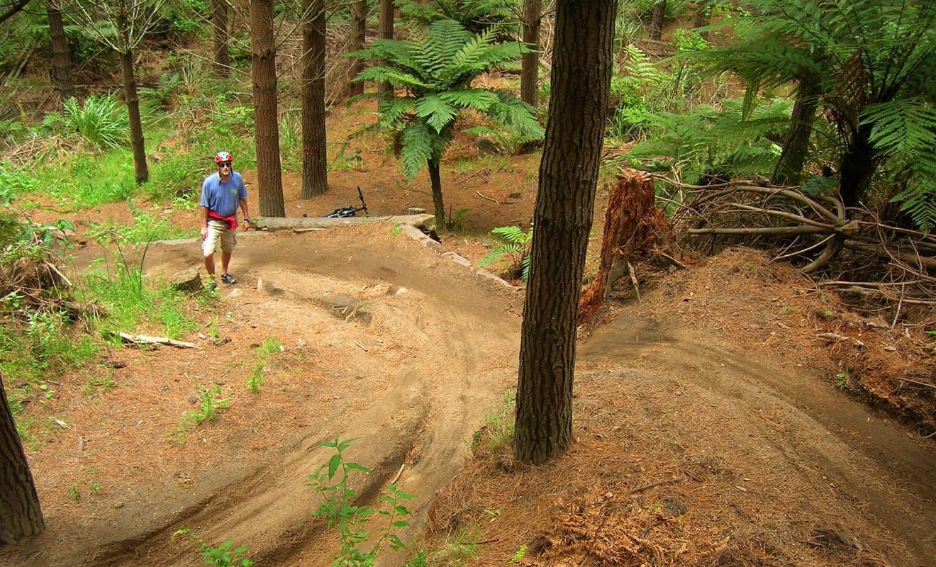 Également connue sous le nom de Whakarewarewa, la forêt de Redwoods possède plus de 60 km de pistes de VTT. Idéal aussi bien pour les balades en famille que pour les amateurs de sports extrêmes.