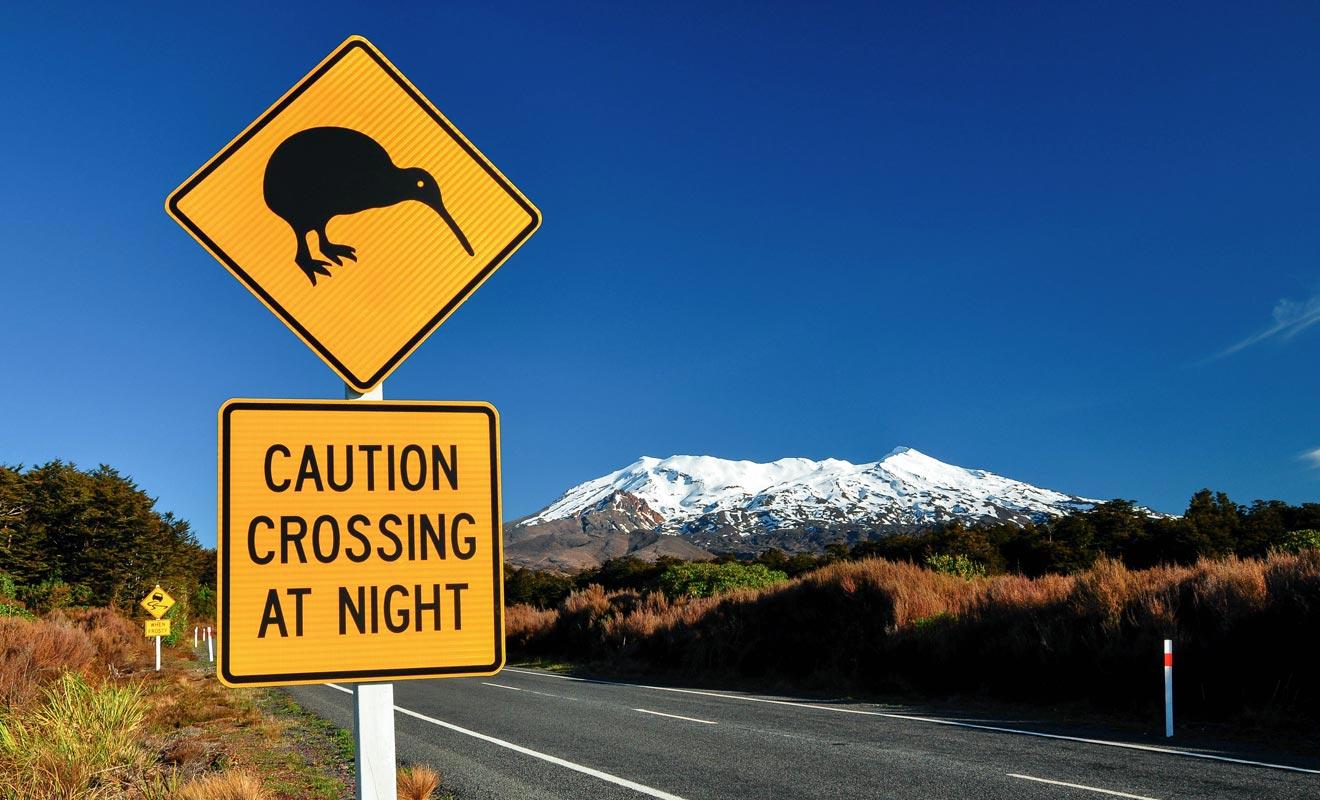 Le jeu consiste souvent à repérer les panneaux originaux sur le bord de la route. Certains mettent en garde contre les Kiwis ou les pingouins !