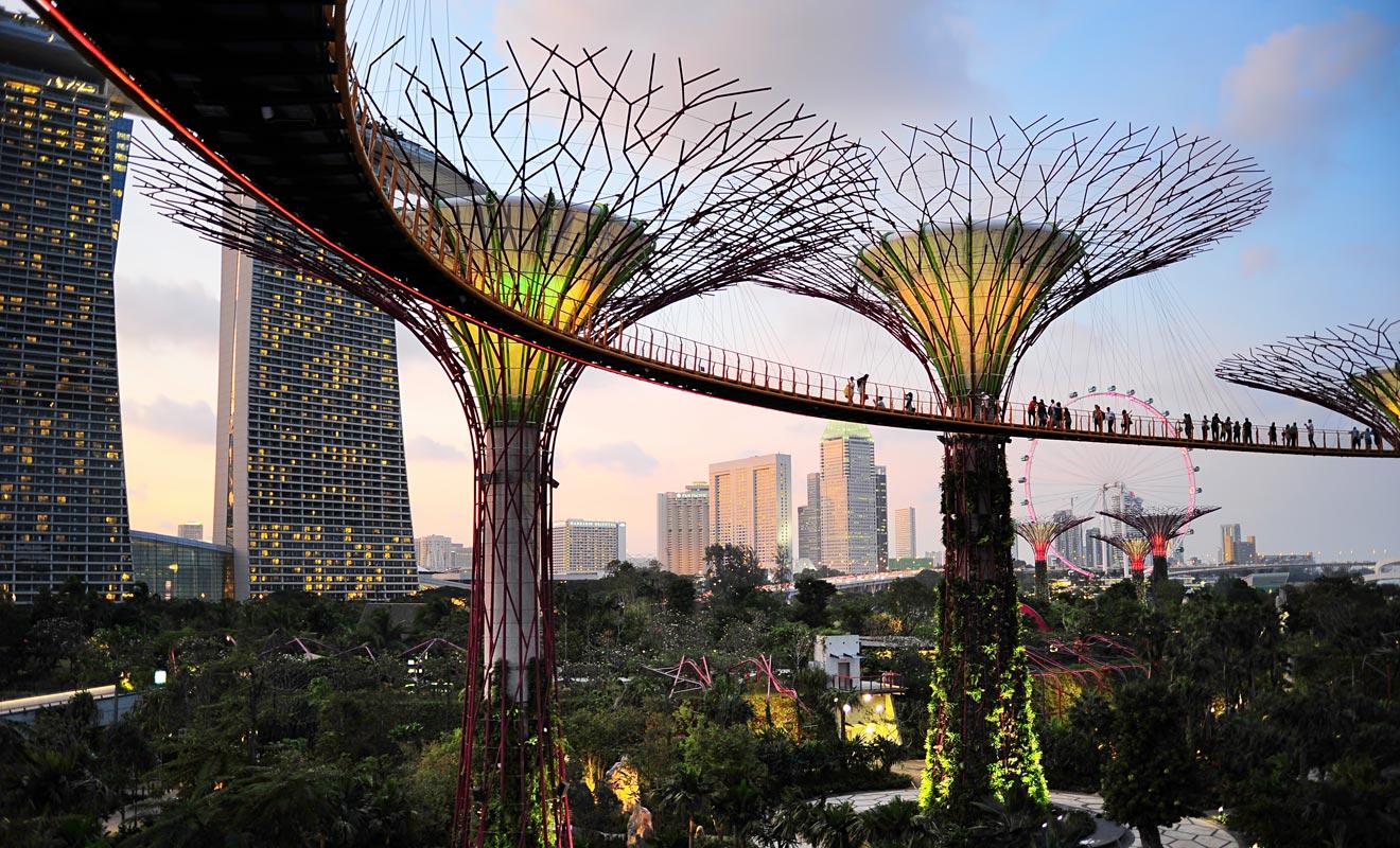Les jardins de Singapour sont splendides. Si votre escale vous laisse suffisamment de temps, ce serait dommage de manquer cette visite.