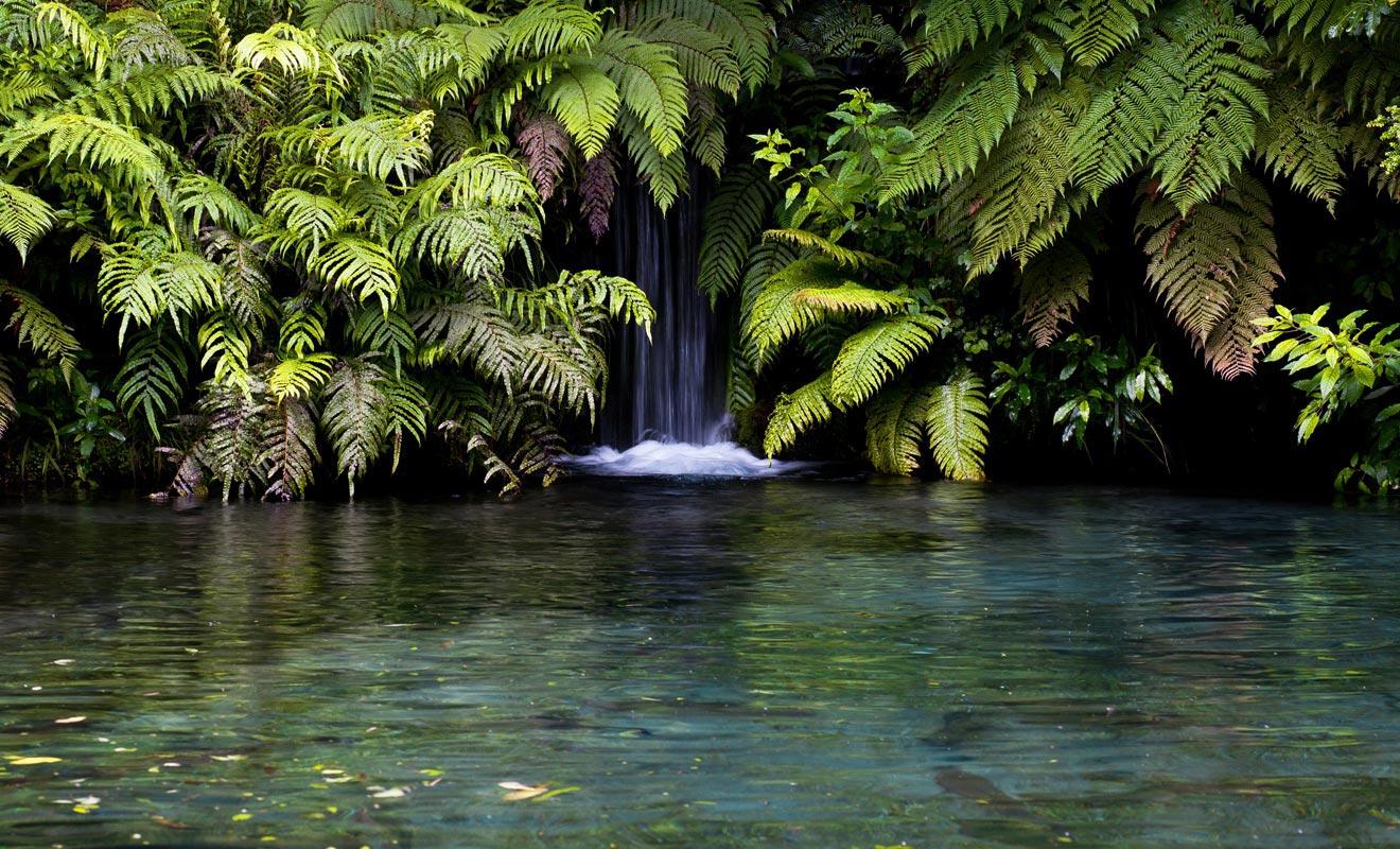 Les innombrables sources thermales chaudes permettent de se baigner toute l'année. Sur l'île du Nord, il faut toutefois éviter de mettre la tête sous l'eau à cause d'une amibe dangereuse pour la santé.