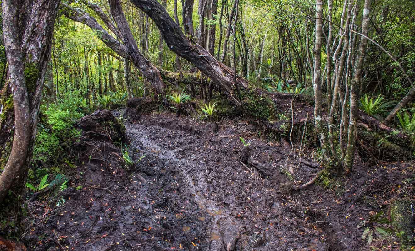 Il n'est pas rare de s'enfoncer dans la boue sur le parcours.