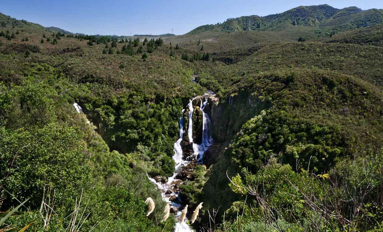 Guettez le panneau sur le bord de la route pour ne pas manquer les Waipunga Falls.
