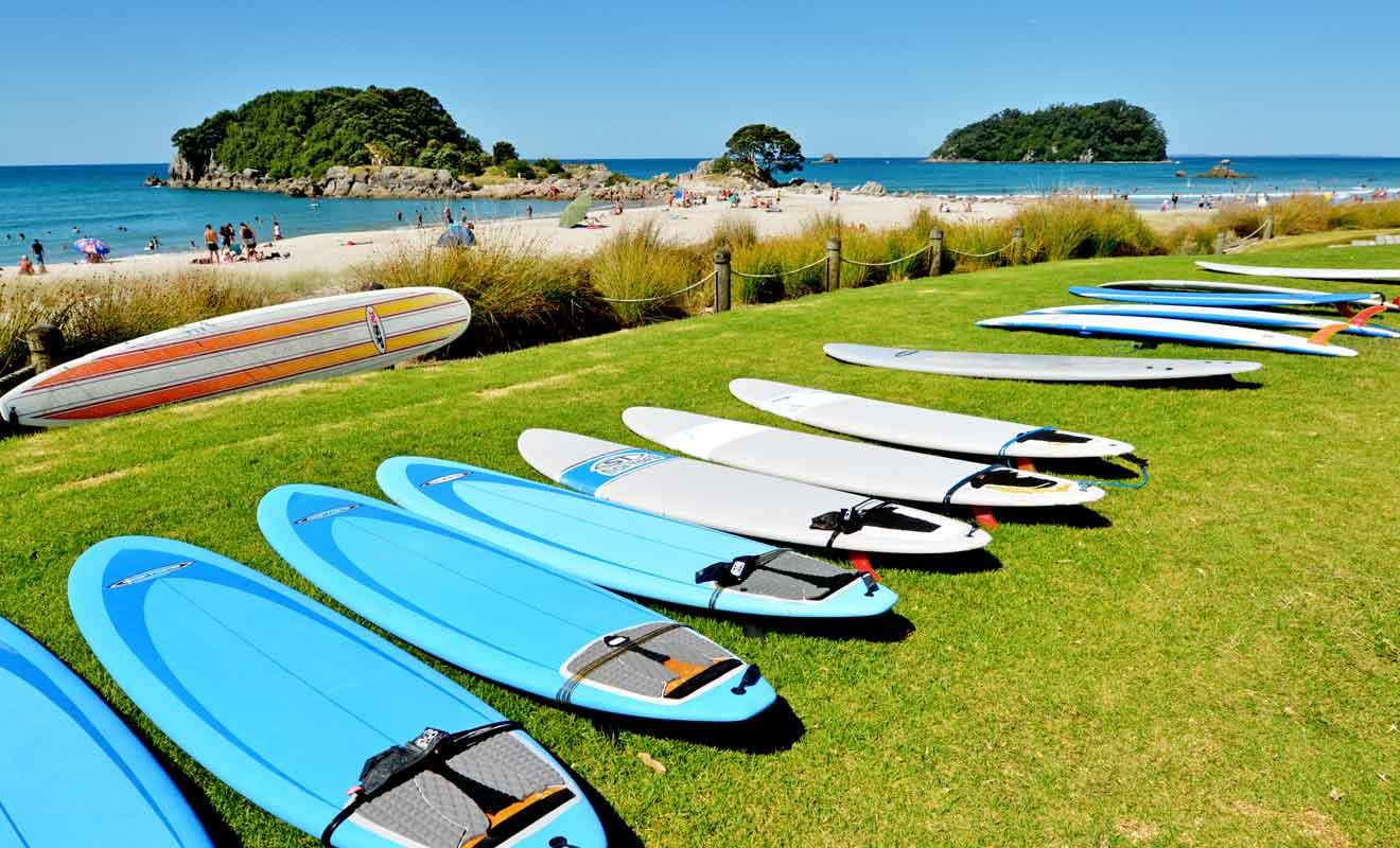 Les voyageurs qui savent surfer peuvent aussi louer des planches directement.