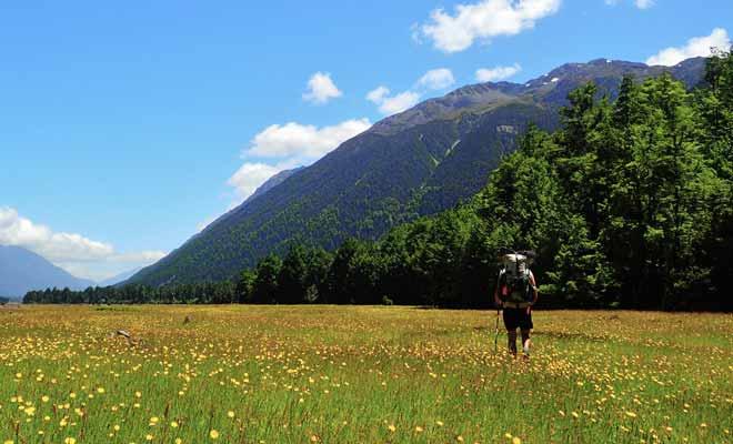 Inaugurée en 2011, Te Araroa Trail est l'une des plus longues pistes de randonnées au monde. L'itinéraire savamment étudié traverse toute la Nouvelle-Zélande du Nord au Sud.