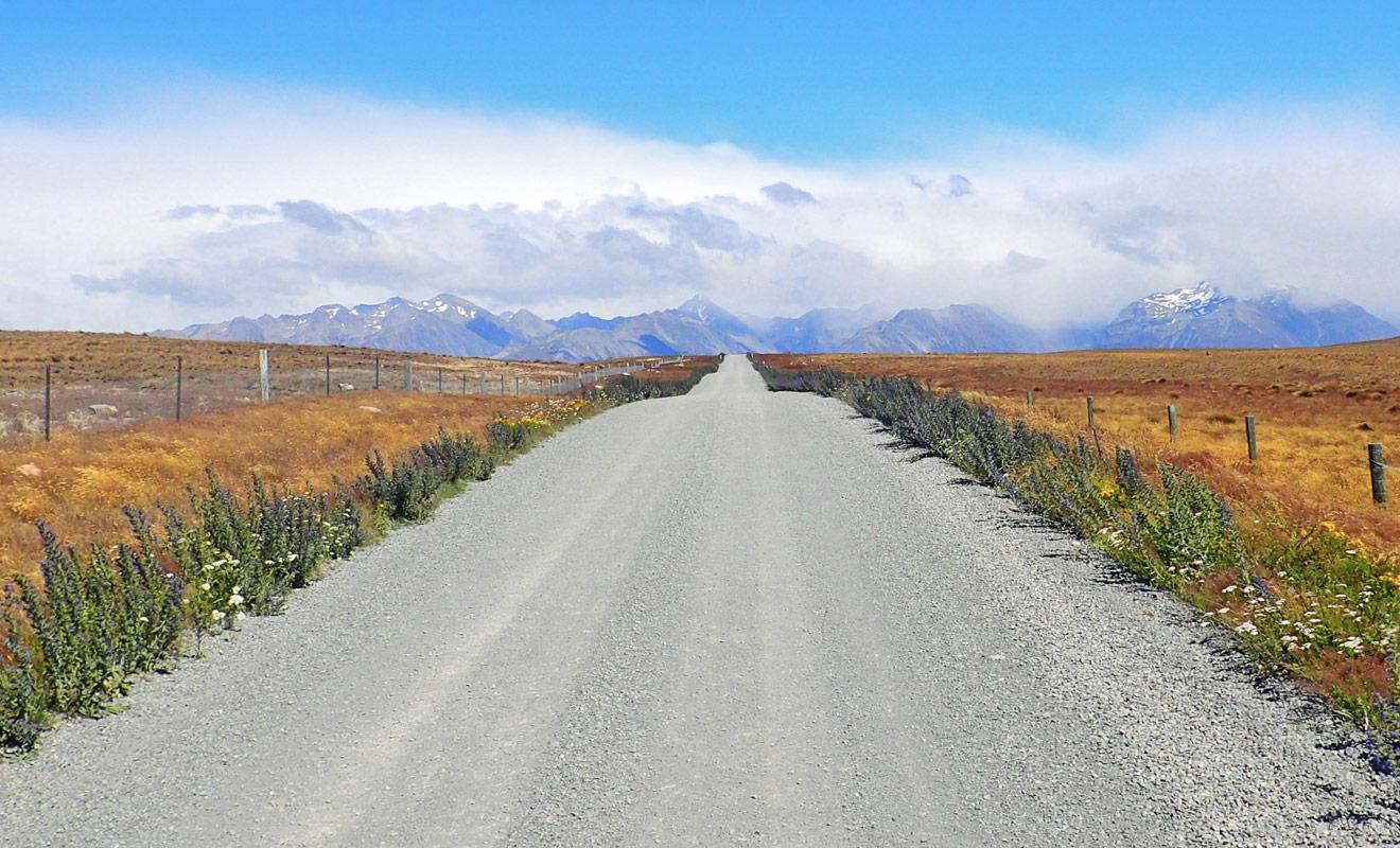 Une petite partie de Te Araroa Trail longe encore le bord des routes. Mais des négociations sont en cours pour limiter ces étapes pénibles, et les supprimer totalement à terme.