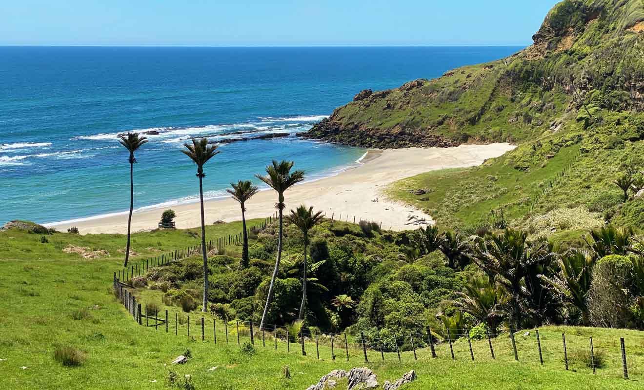 Depuis le cottage, il suffit d'une vingtaine de minutes pour rejoindre la plage de Gilbert Beach.