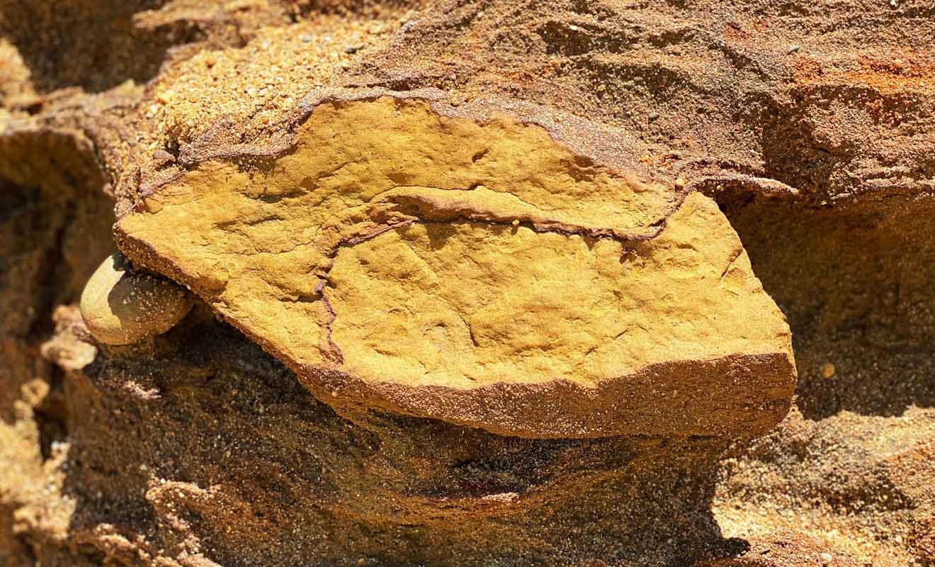 Comme à Abel Tasman, l'oxyde de fer explique la teinte orangée des rochers.