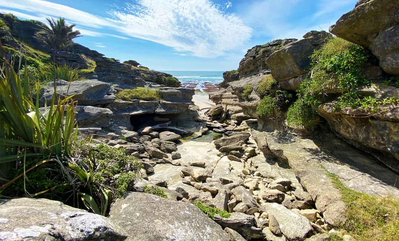 Il existe une infinité de chemins à emprunter pour explorer Te Hapu.