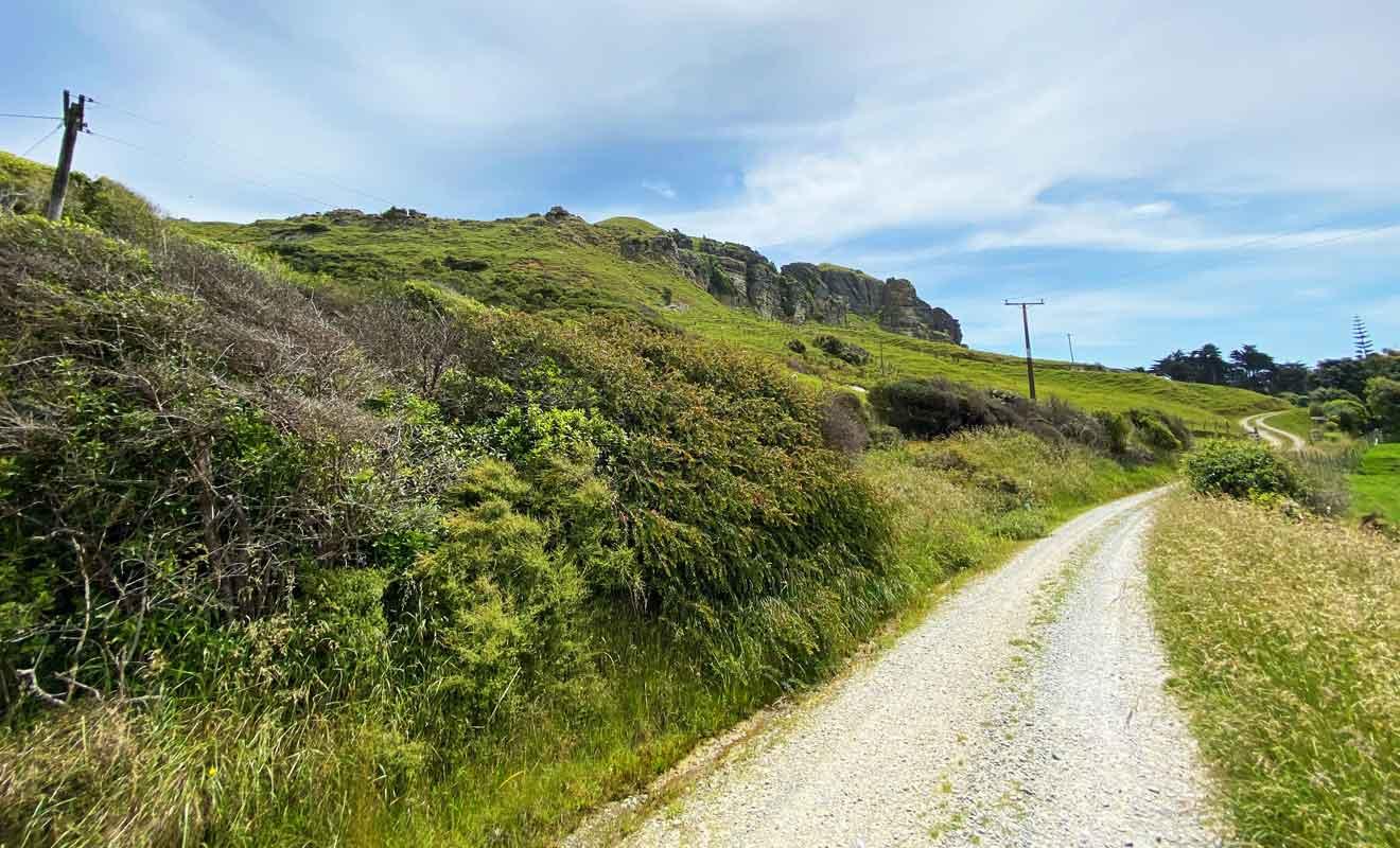 Te Hapu accueille les visiteurs depuis 1978.