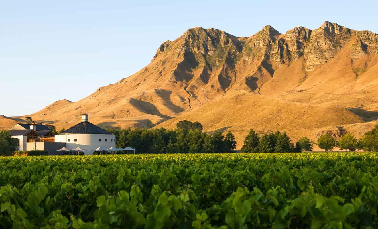 Craggy Range Vineyards est l'un des meilleurs vignobles de la baie de Hawke.