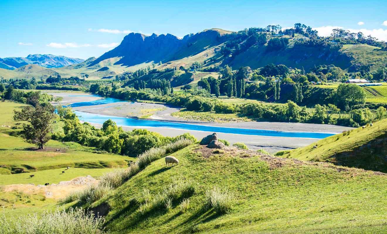 Le Te Mata Peak offre une vue imprenable sur Hawke's Bay.