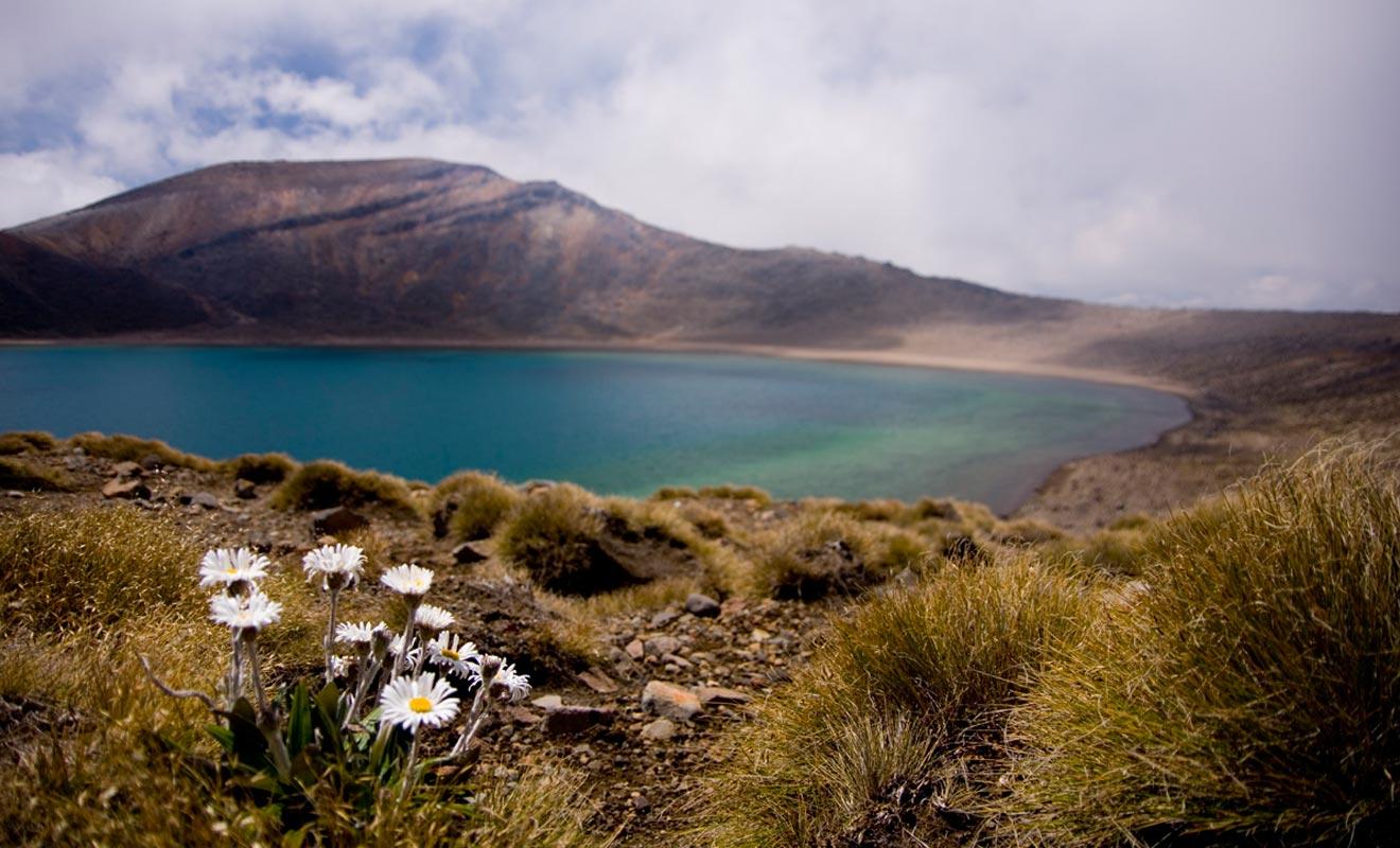 Un visa touristique vous donne la possibilité de séjourner durant trois mois en Nouvelle-Zélande, mais il ne vous autorise pas à travailler pour autant. Passé la durée légale, il faudra quitter le territoire ou demander un autre type de visa.