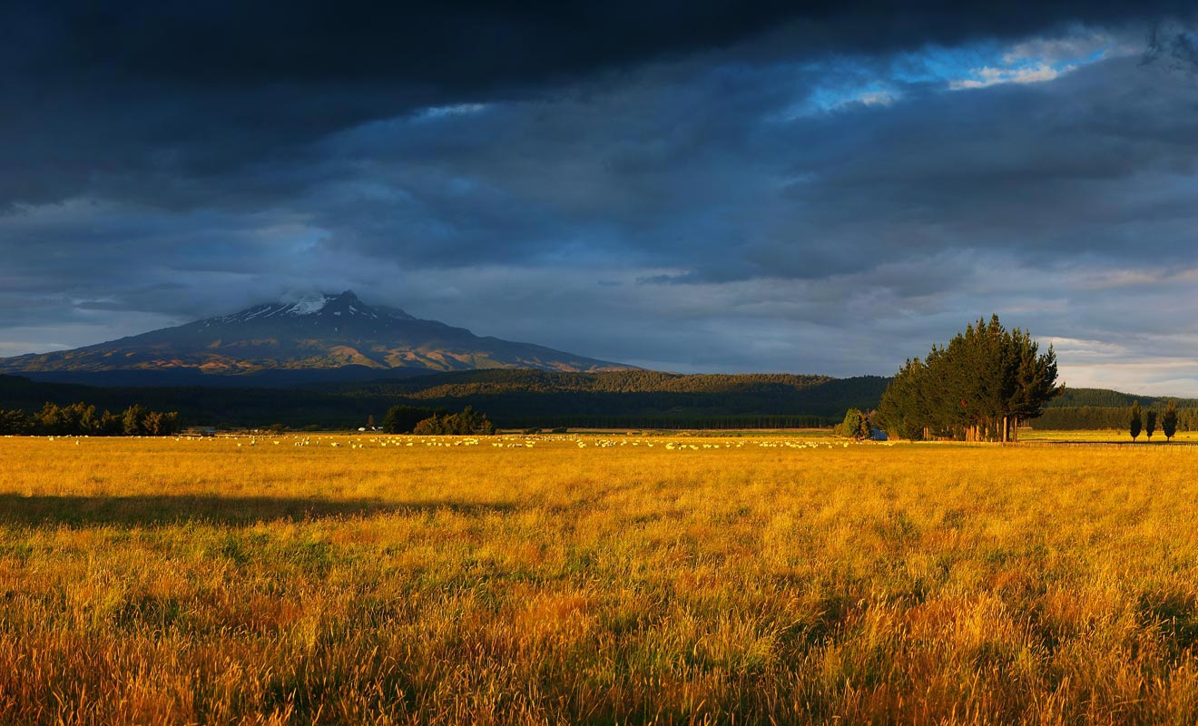 Le Tongariro Alpine Crossing se situe au coeur d'un parc national dont vous aurez un aperçu dans la navette qui vous conduira au parking de Mangatepopo.